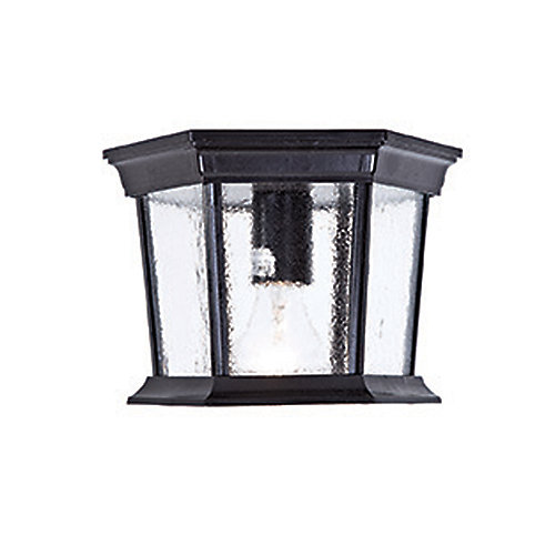 Dover 1-Light Matte Black Outdoor Ceiling Flushmount