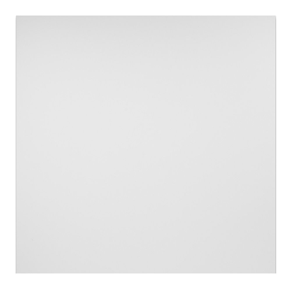 Genesis 2 ft. x 2 ft. Smooth Pro White Ceiling Panel Carton of 12