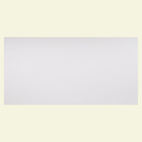 2 ft. x 4 ft. Smooth Pro White Ceiling Panel Carton of 10