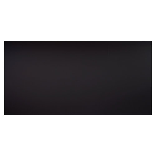 2 ft. x 4 ft. Smooth Pro Black Ceiling Panel Carton of 10