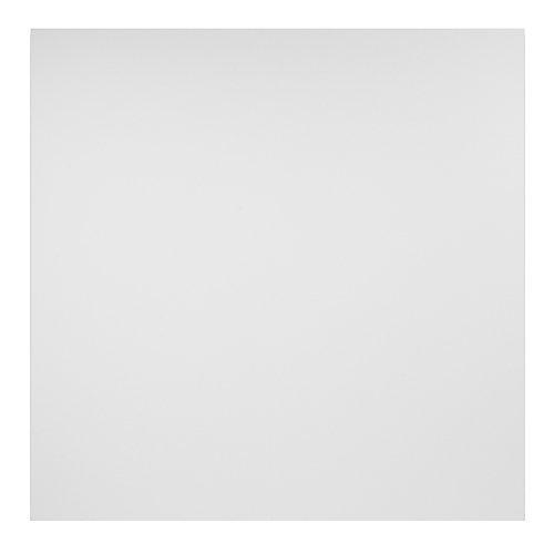 2 ft. x 2 ft. Border Fill White Ceiling Panel Carton of 12