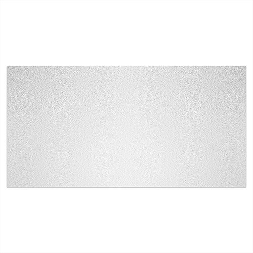 2 ft. x 4 ft. Stucco Pro White Ceiling Panel Carton of 10