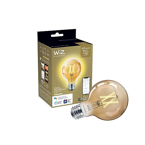 Philips Ampoule G25 DEL WiZ à intensité variable, blanc chaud à filament clair, 350 lumens, équivalent à 40W