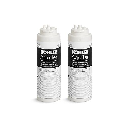 Aquifer 2 Pack Replacement Filter Cartridges
