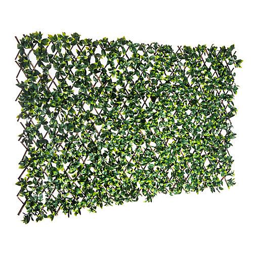 Brand 36 inch x 72 inch Expandable Gardenia Leaf Trellis