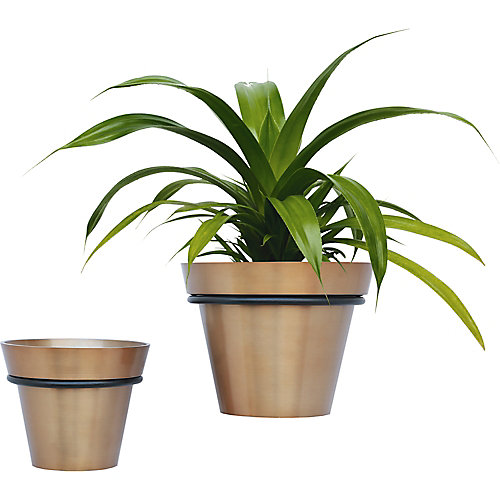 Roni Iron Decorative Indoor and Outdoor Planter in Brass (Set of 2)
