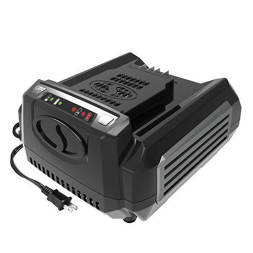 100V Rapid Charger for iON100V Series Snow Joe & Sun Joe Tools