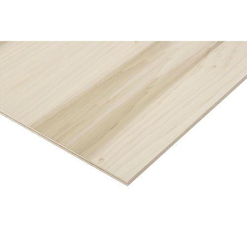 1/2in. X 2ft. X 4ft. Poplar Plywood