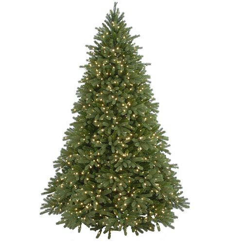 7.5 ft. Jersey Fraser Fir Tree with Clear Lights