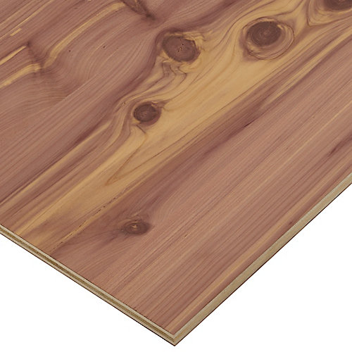 1/2in. X 2ft. X 4ft. Aromatic Cedar Plywood