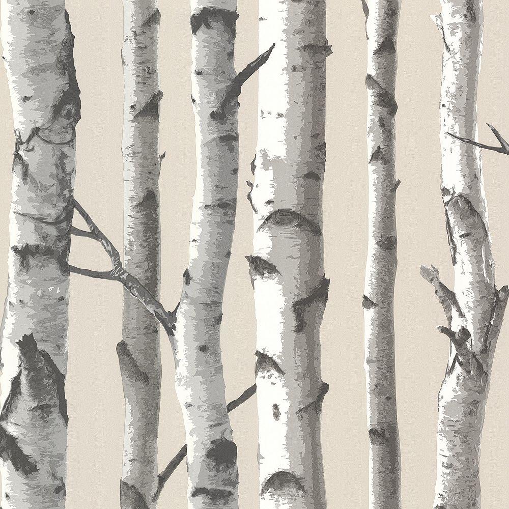 Chesapeake Tuxbury Beige Birch Tree Wallpaper The Home Depot Canada