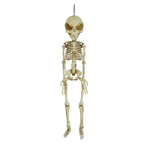 3 ft. LED Hanging Alien Skeleton