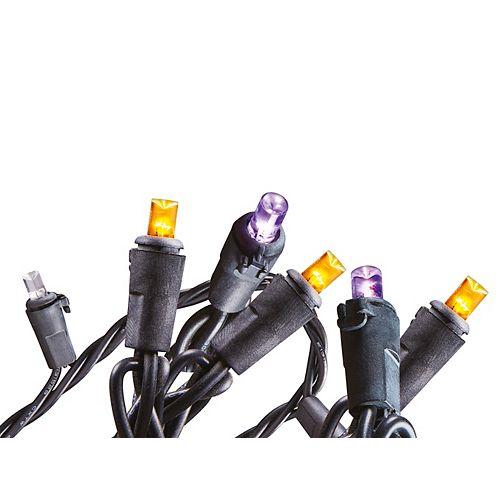 100 Ampoules Del En Dôme Qui Passent Du Violet À L'Orange