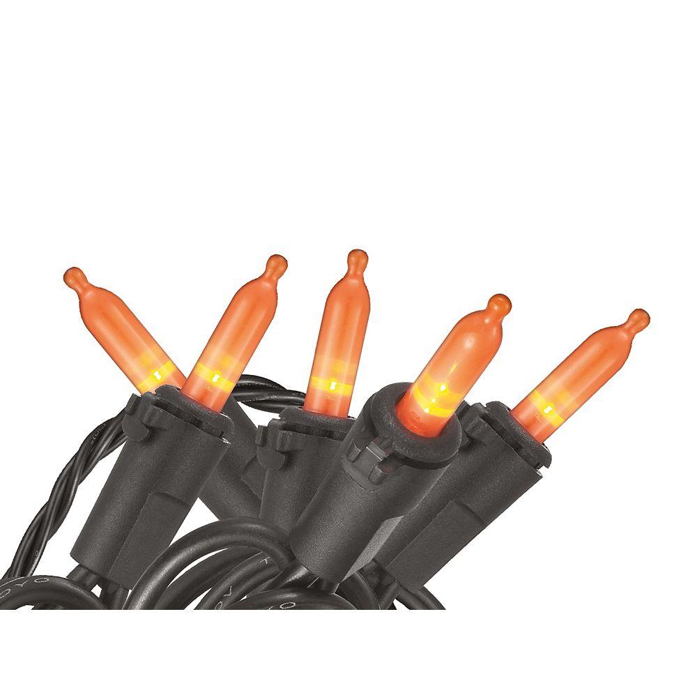 Home Accents 100 Ampoules M5 À Del Blanches Avec Couvercle Noir