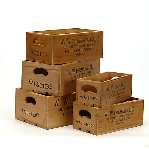 boîtes ensemble de 5 vie côtière