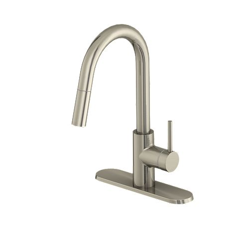 Haisley Single-Handle Pull-Down Kitchen Faucet in Stainless Steel