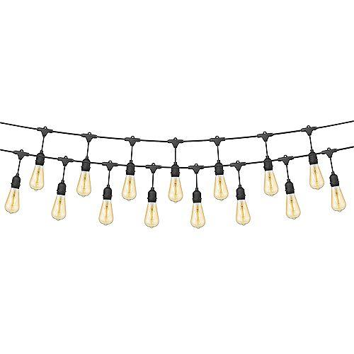 Ove All-Season LED String Light with 24 Oversized Edison Light Bulbs, 48'