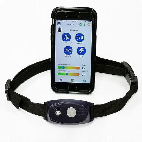 Collier d'entraînement Bluetooth en 5 contrôlé par smartphone Bluefang