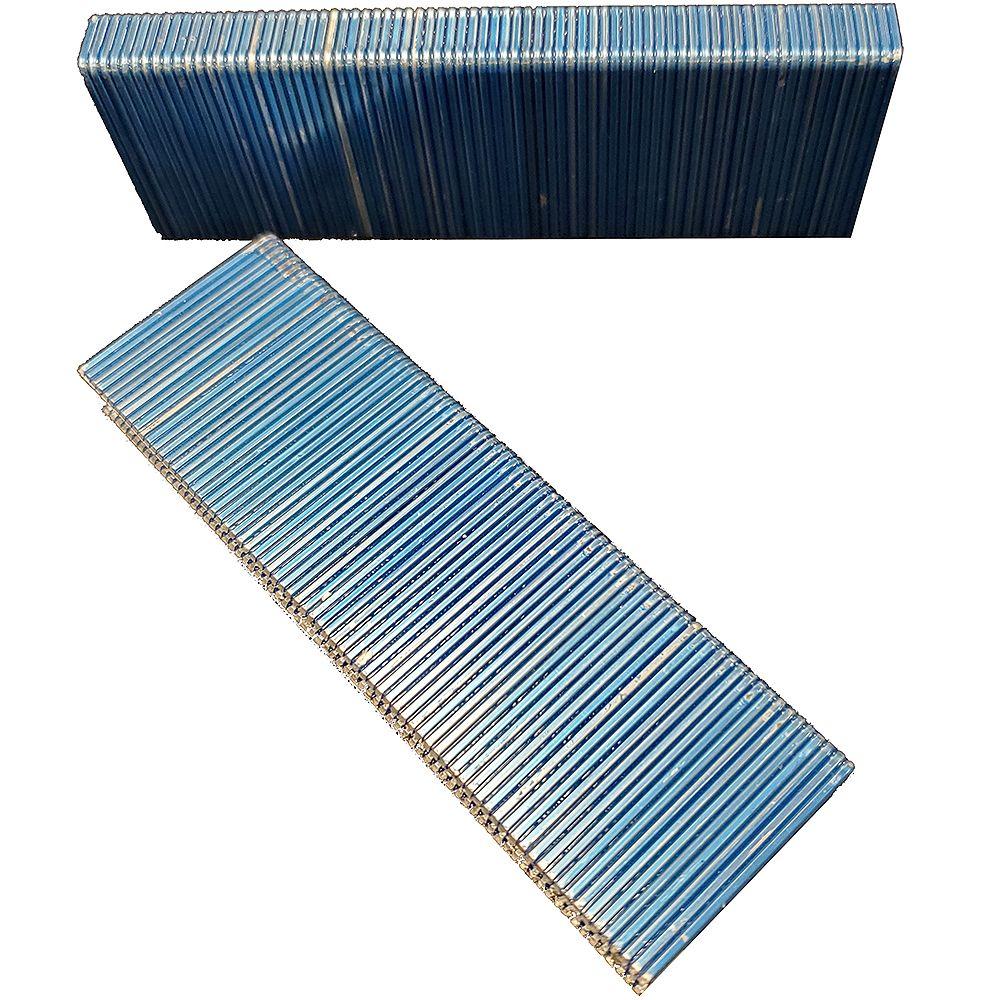 "Paslode Galvanized Staples - 16 Gauge - 1-1/2"" (10,500 per Box)"