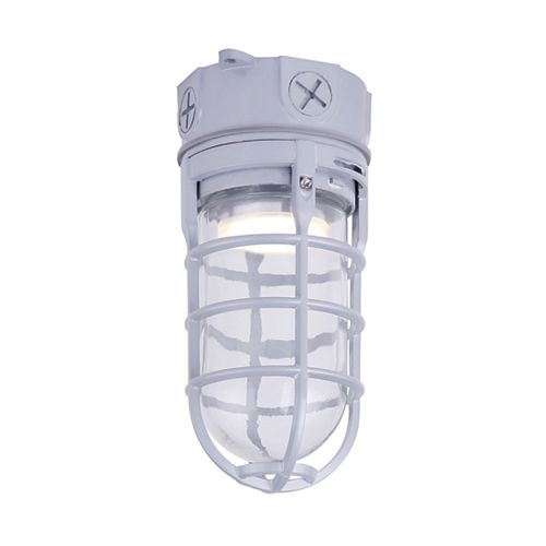 LED Grey Outdoor Barn Light/Flush Mount Light