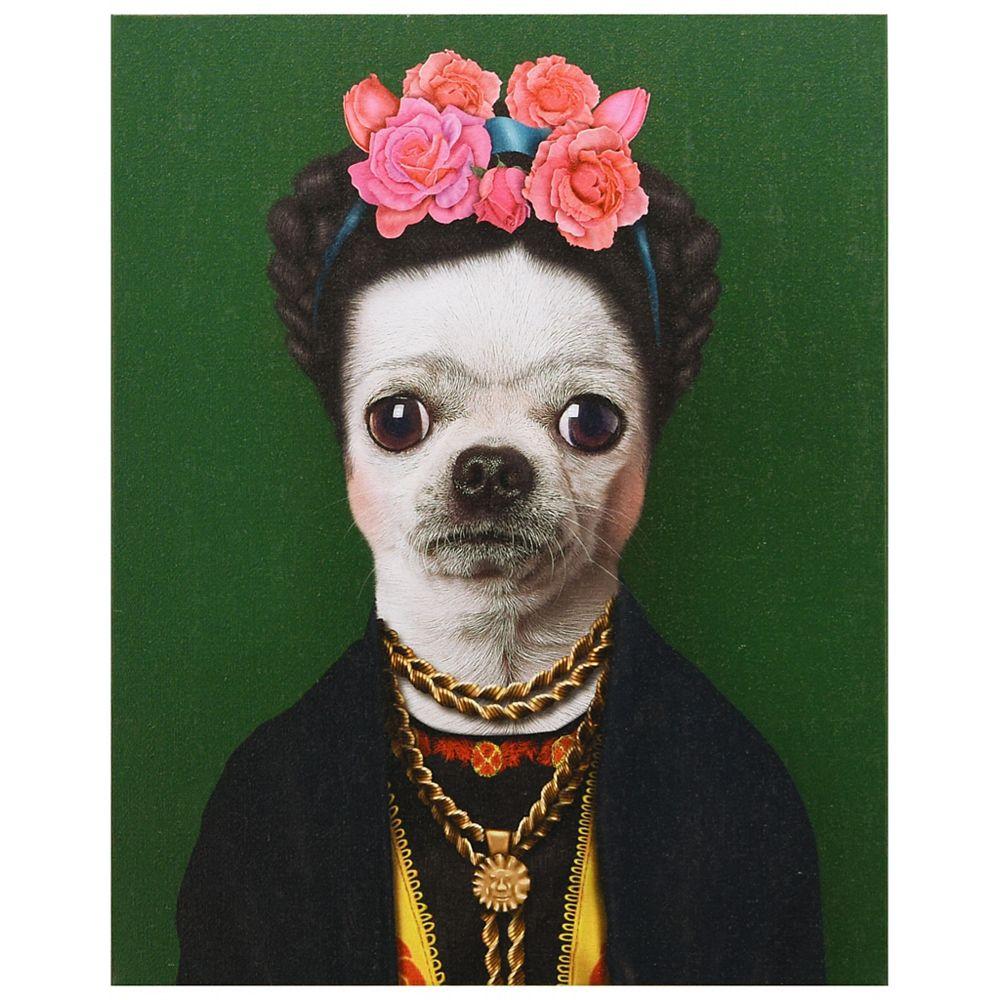 Empire Art Direct Pets Rock Mexique Art graphique sur toile de chien enveloppé Art mural
