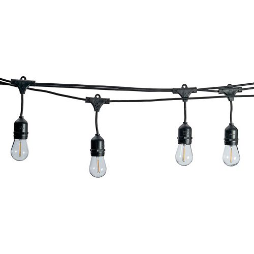 Lumières extérieures commerciales d'ampoule Edison DEL à intensité réglable de 48 pieds