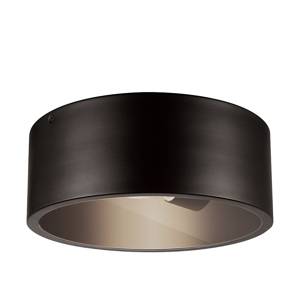 Globe Electric Teagan 1-Light Dark Bronze Outdoor Indoor Flush Mount Ceiling Light