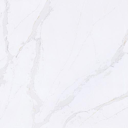 Calacatta Gold 4-inch x 8-inch Contertop Sample