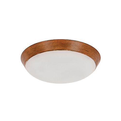 Trousse d'éclairage de ventilateur de plafond Koa Type A