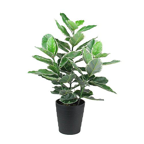 """36.5"""" Potted Green and White Artificial Rubber Inspired Plant"""