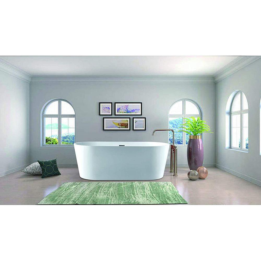 Vanity Art 67 inch Freestanding Acrylic Bathtub With Polished Chrome Overflow & Pop-Up Drain VA6901-L