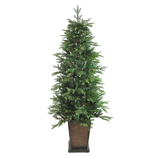 Northlight 6' Pre-Lit Potted Oregon Noble Fir Slim Artificial Christmas Tree - Warm White LED Lights