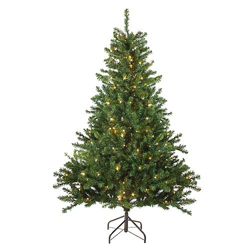 Northlight 6' Pre-Lit Medium Canadian Pine Artificial Christmas Tree - Candlelight LED Lights