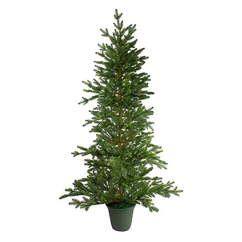 Northlight 6' Potted Noble Pine Artificial Christmas Tree - Unlit