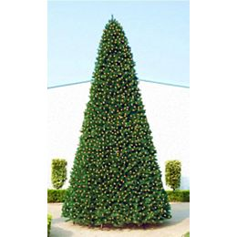 Commercial Size Pine Artificial Christmas Tree - 12 foot  Clear Lights