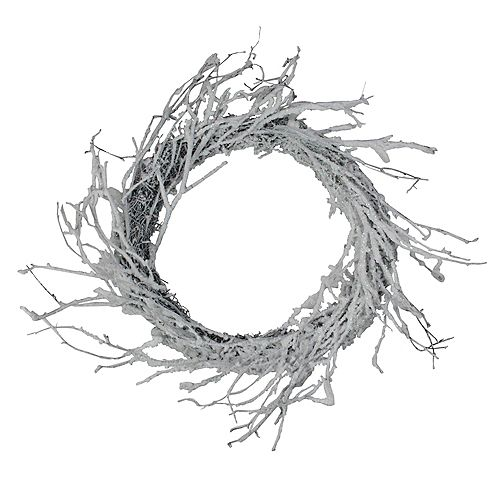 "Northlight 24"" Snow Flocked and Iridescent Glitter Twig Artificial Christmas Wreath - Unlit"
