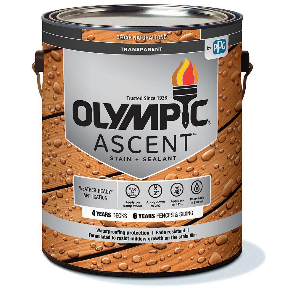 Olympic Ascent Exterior Transparent Stain Plus Sealant in Cedar Naturaltone 3.78 L Capacity