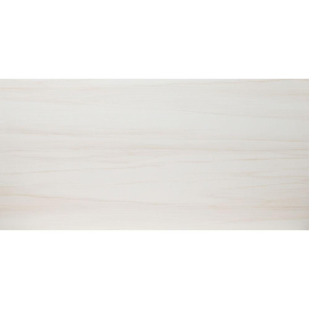 MSI Stone ULC Carreaux de porcelaine polie pour planchers et murs Yukon Dolomite de 12 po x 24 po