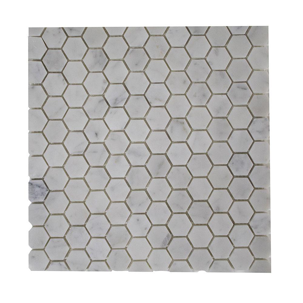 Mono Serra Group Mono Serra Carreau de mosaïque en marbre Hexagon 12 po x 12 po, 10 pi2/boîte