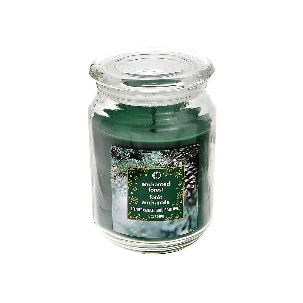IH Casa Decor 18 Oz Scented Jar Candle (Enchanted Forest)
