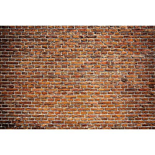 Old Brick Wall Mural