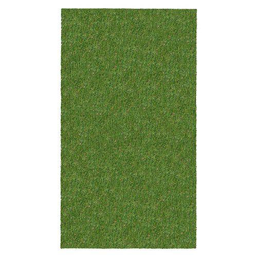 3'x5' Green Indoor / Outdoor Artificial Grass