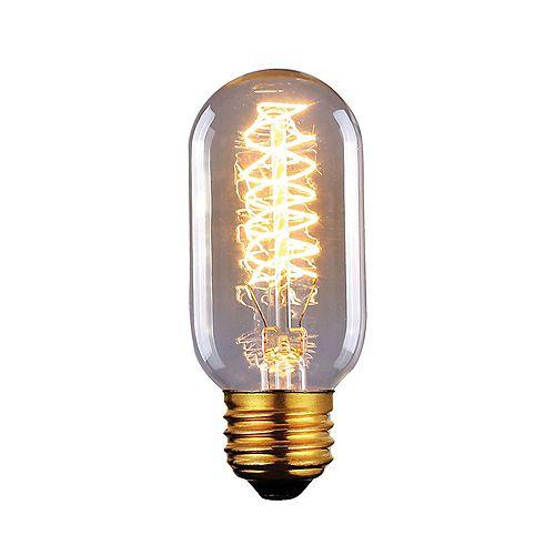 Ampoule à filament vintage 60W