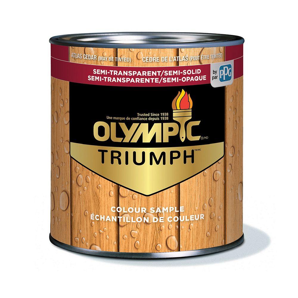 Olympic Triumph Semi-Transparent/Semi-Solid Stain plus Sealant Atlas Cedar 221 mL-8221121C