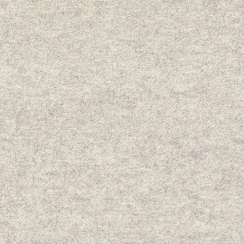 Flat N58 Oatmeal 24-inch x 24-inch Carpet Tiles (15 Tiles / Case)