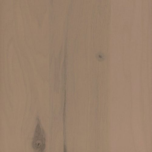 Sample Colour Chip 3.25 inch x 3.25 inch in Rustic Hickory Hawk