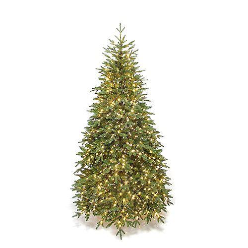7 ft. 1000 Warm White Microdot LED Pre-Lit Appalachian Frasier Fir Christmas Tree