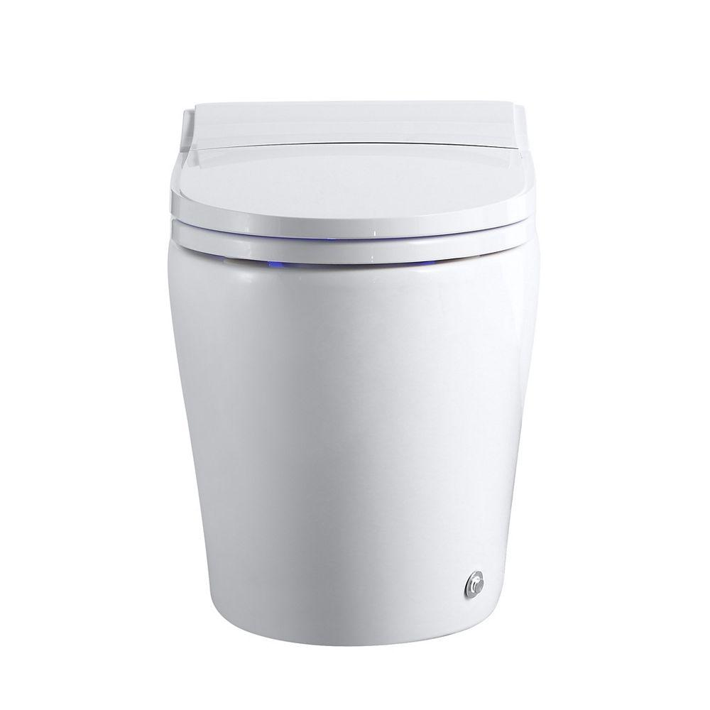 Ecoway TitanDT300 Smart Bidet Toilet