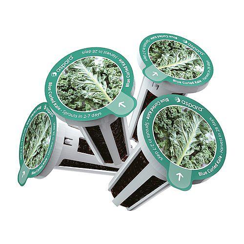 Aspara Blue Curled Kale 8 capsule Seed Kit