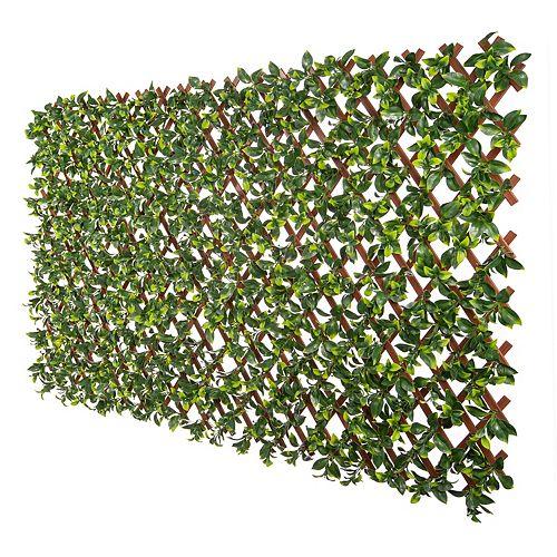 Expandable pvc trellis gardenia